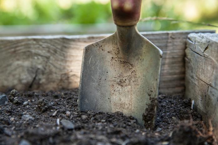 Soil & Trowel